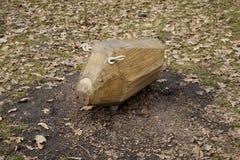 Деревянная игрушка свиньи в спортивной площадке для кататься на лыжах Стоковое Фото