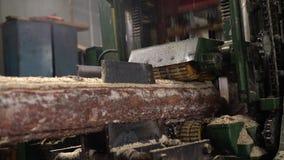 Деревянная индустрия Взгляд sawing журнала, конца-вверх сток-видео