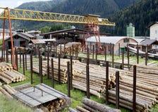 Деревянная индустрия Стоковые Изображения