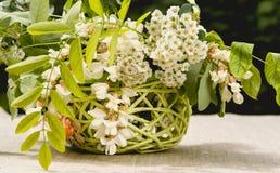 Деревянная корзина и букет весны белых wildflowers Дом и сад Стоковые Изображения