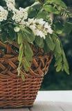 Деревянная корзина и букет весны белых wildflowers Стоковые Изображения