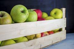 Деревянная коробка вполне свежих яблок Стоковое Изображение RF