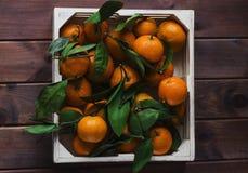 Деревянная коробка свежих tangerines с листьями взгляд сверху Стоковая Фотография