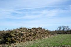 Деревянная куча готовая для откалывать стоковое изображение