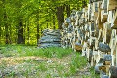 Деревянная куча около зеленого леса Стоковая Фотография RF