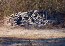 Деревянная куча Стоковая Фотография RF