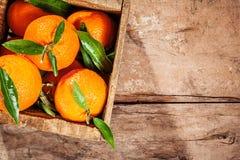 Деревянная клеть свежих красочных Клементинов Стоковое Фото