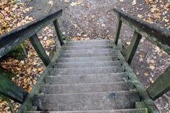 Деревянная лестница в парке в имуществе отсчета Лео Толстоы в Yasnaya Polyana Стоковые Фотографии RF