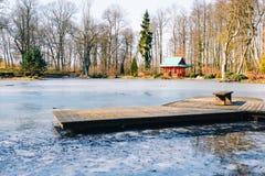 Деревянная мола на замороженном озере в саде стоковое фото rf