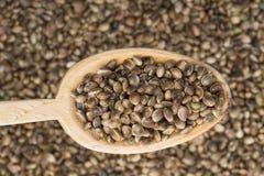 Деревянная ложка с семенами пеньки Стоковое Изображение