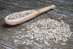 Деревянная ложка с семенами подсолнуха Стоковые Изображения RF