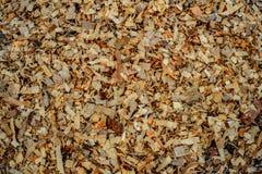 Деревянная опилк Стоковое фото RF
