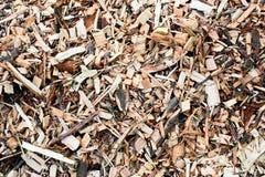 Деревянная опилк Стоковое Изображение RF