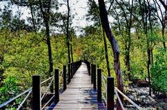 Деревянная дорожка в лесе Стоковое Фото