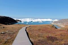 Деревянная дорожка к jakobshavn фьорда льда Ilulissat около Ilulissat в лете Стоковая Фотография RF