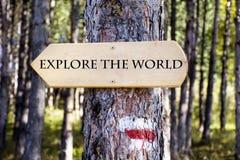 Деревянная доска знака в лесе Доска направления стоковое изображение