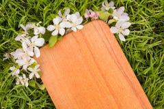 Деревянная доска и ветвь цветка яблони Стоковая Фотография RF