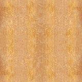 Деревянная доска для безшовной предпосылки - желтого прикарпатского вяза Стоковое фото RF