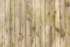 Деревянная передняя текстура Стоковое Фото