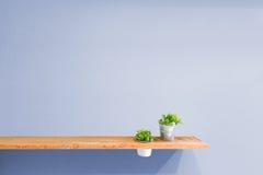 Деревянная полка на фиолетовой винтажной стене с заводом стоковые фотографии rf