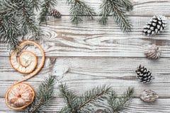 Деревянная предпосылка бело Карточка зимы разветвляет зеленый цвет ели Tangerine xmas вектора иллюстрации карточки Космос для mes Стоковые Фотографии RF