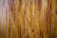 Деревянная предпосылка двери Стоковая Фотография RF