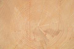 Деревянная предпосылка Ежегодные кольца на стороне дерева стоковые фотографии rf