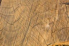 Деревянная предпосылка, деревянная поверхность, деревянная текстура Стоковое фото RF