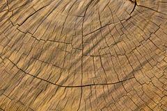 Деревянная предпосылка, деревянная поверхность, деревянная текстура Стоковые Изображения RF