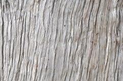 Деревянная предпосылка расшивы Стоковое Фото