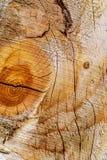 Деревянная предпосылка текстуры Текстура Брайна деревянная, старая деревянная текстура для добавляет текст или проектные работы Стоковое Изображение