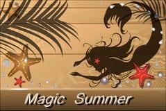 Деревянная предпосылка лета с seashells, морскими звёздами, русалкой Стоковое Фото