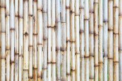 Деревянная предпосылка загородки безшовная Стоковое Изображение RF