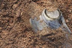 Деревянная предпосылка опилк Стоковая Фотография RF