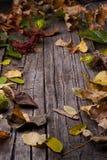 Деревянная предпосылка с листьями осени Стоковые Фото
