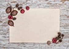 Деревянная предпосылка с старой бумагой и сухими заводами Стоковые Изображения