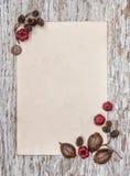 Деревянная предпосылка с старой бумагой и сухими заводами Стоковые Фото