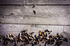 Деревянная предпосылка с сухими упаденными листьями стоковые фотографии rf