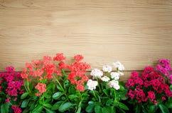 Деревянная предпосылка с цветками Стоковые Изображения
