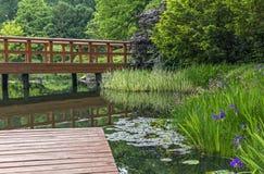Деревянная пристань и красивые заводы в японском саде Стоковое Фото