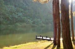 Деревянная пристань на утре стоковые фотографии rf
