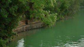 Деревянная пристань рядом с рекой воды и зеленых лесных деревьев Ландшафт природы красивый видеоматериал