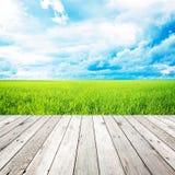 Деревянная пристань с полем травы и предпосылкой голубого неба Стоковое Фото