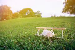 Деревянная плоская игрушка на зеленой траве над голубым небом с copyspace Стоковые Изображения RF