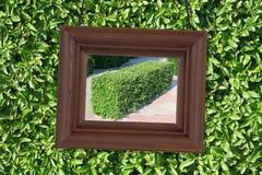 Деревянная рамка на предпосылке листва Стоковая Фотография