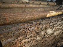 Деревянная расшива стоковое изображение rf