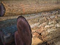 Деревянная расшива стоковая фотография rf