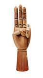 Деревянная рука Стоковые Изображения RF