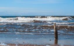 Деревянная ручка стоя против пляжа моря wavesnorth Стоковые Изображения RF