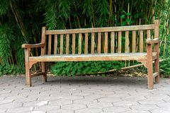 Деревянная скамья в бамбуковом парке Стоковые Изображения